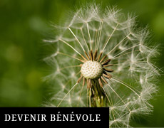 Devenir bénevole
