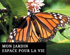 Mon Jardin Espace pour la Vie à Montréal
