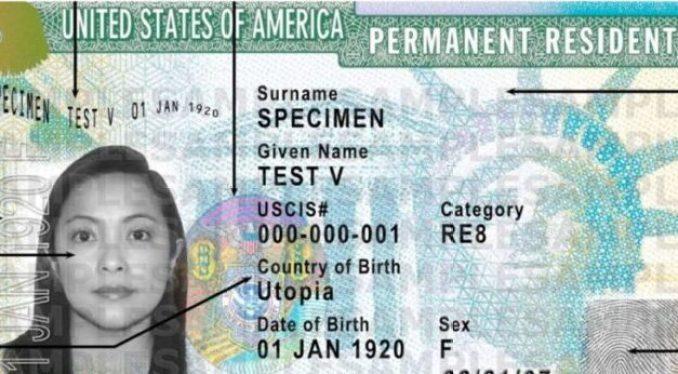 8 maneras de obtener una Green Card y vivir en Estados Unidos
