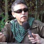 Piden las FARC garantías para movimientos sociales