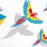 Francia: Avanza exitosamente el Festival por la Paz en Colombia