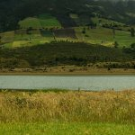 Foro Nacional Ambiental Agro y medio ambiente