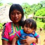 Foro Nacional de los Pueblos Indígenas