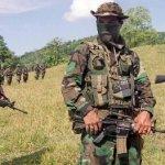 La amenaza paramilitar