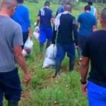 FARC devuelven excombatientes a sus familias en Guaviare