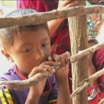 137 niños muertos de hambre este año