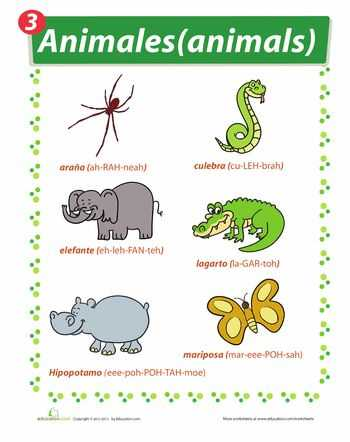 Animals In Spanish Worksheet as Well as 128 Best Learning Spanish Images On Pinterest