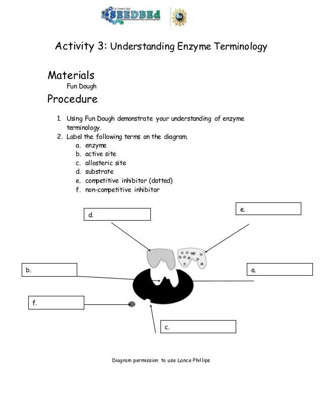 Biology Enzymes Worksheet Answers and Biotechnology Timeline