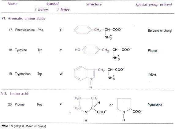 Biomolecules Concept Map Worksheet Also Biomolecules top 4 Classes Of Biomolecules