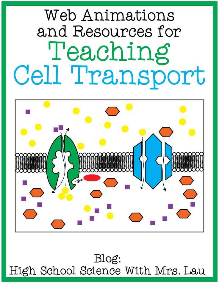 Cell Transport Worksheet Along with 97 Best Cells Cell Membrane Images On Pinterest
