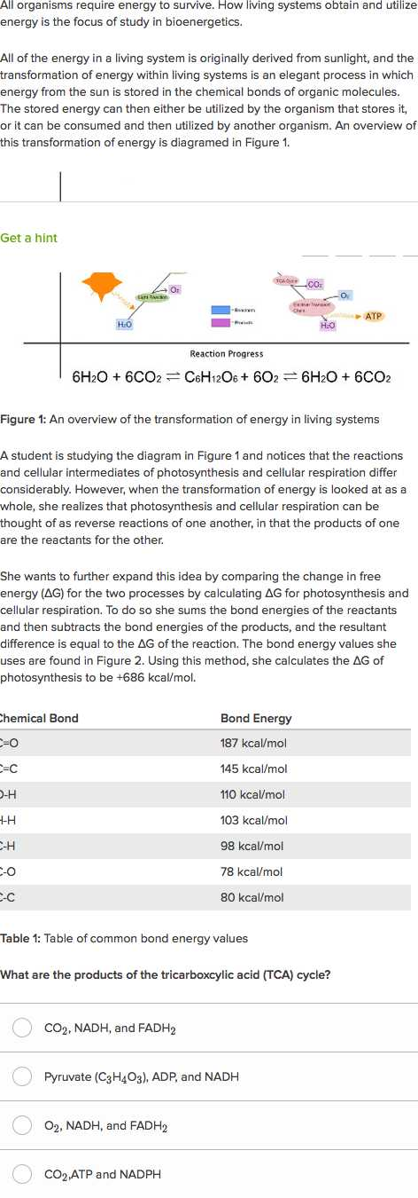 Cellular Respiration Breaking Down Energy Worksheet Answers together with Free Energy Photosynthesis and Cellular Respiration Practice