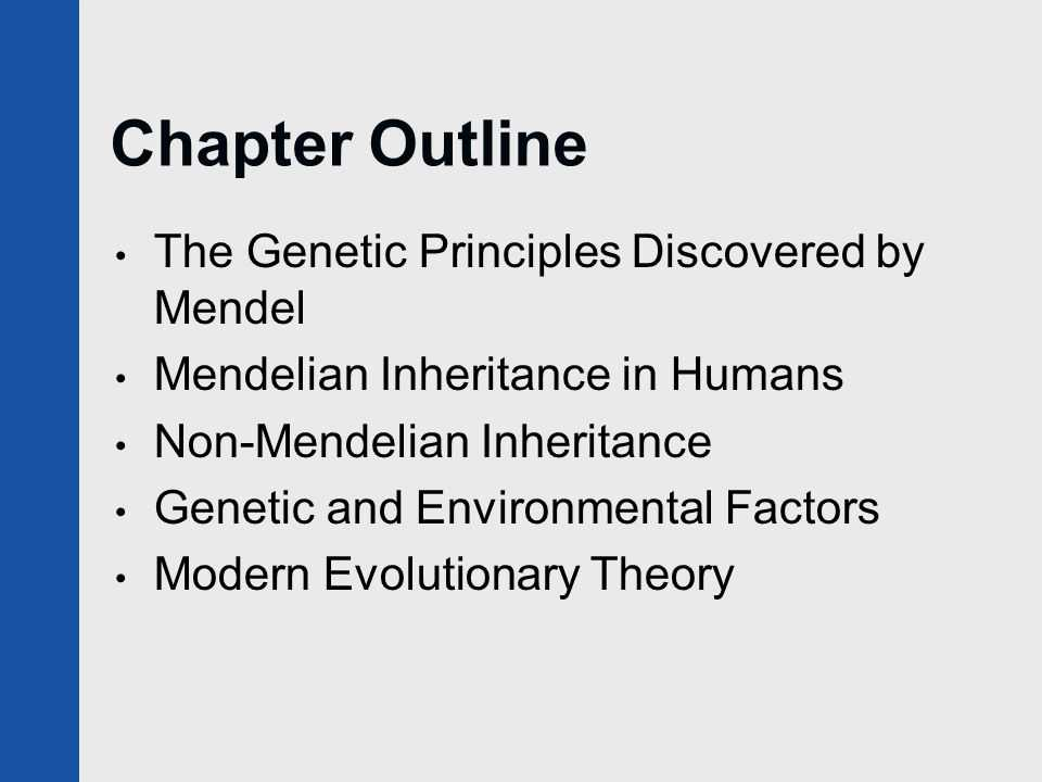 Chapter 11 Introduction to Genetics Worksheet Answers Along with Heredity and Evolution Ppt