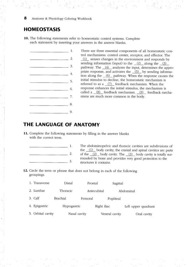 Chapter 24 the Immune System and Disease Worksheet Answer Key with Ziemlich Study Guide for Human Anatomy and Physiology Answers