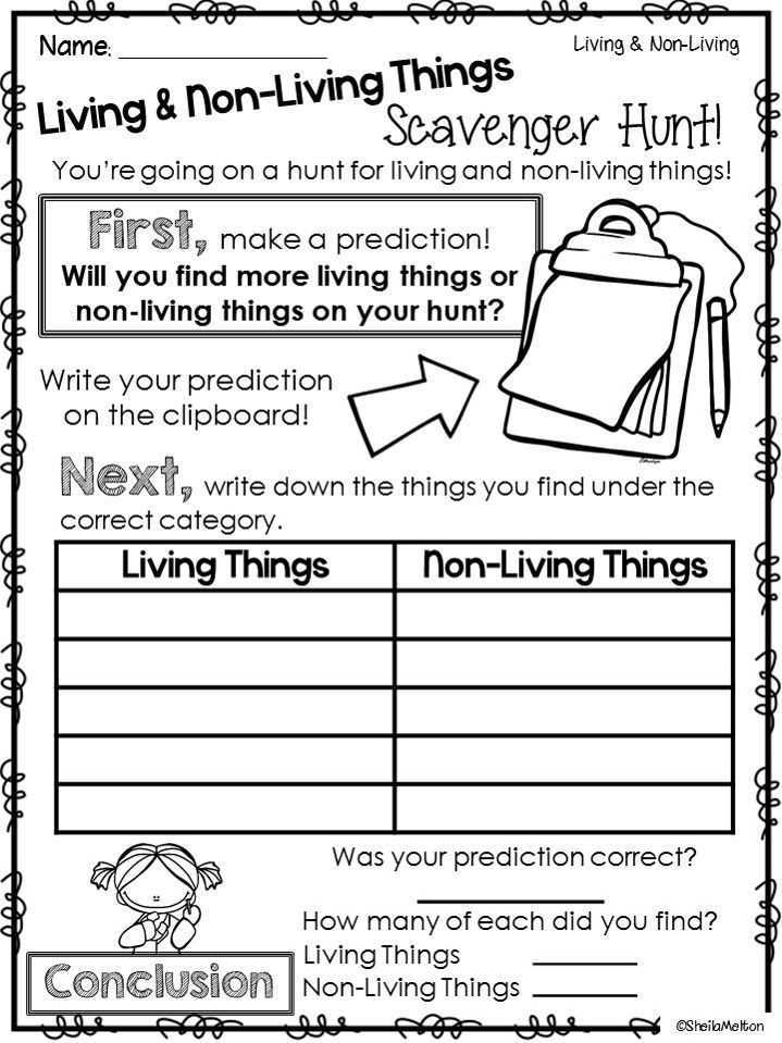 Characteristics Of Living Things Worksheet and 16 Best Kindergarten Science Images On Pinterest
