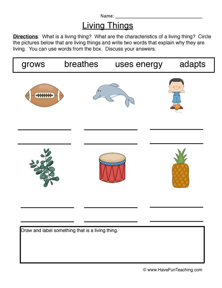 Characteristics Of Living Things Worksheet with Living and Non Living Things Worksheets