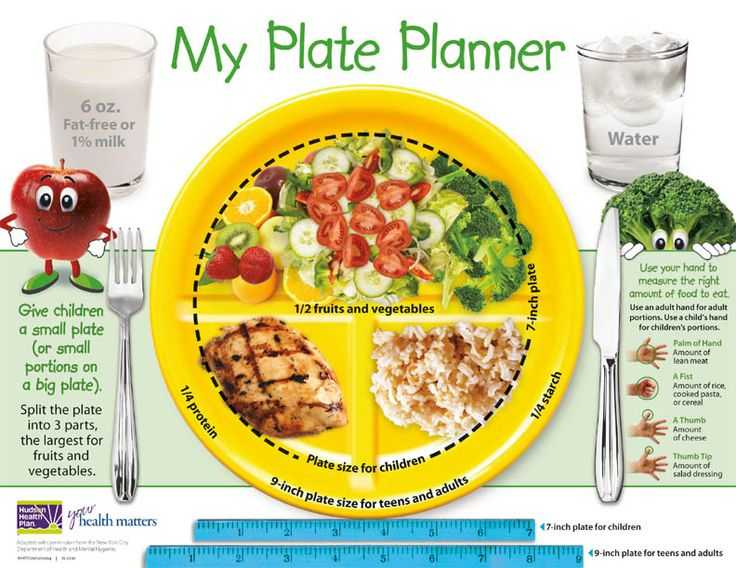 Choose My Plate Worksheet together with 35 Best Myplate for Adults Images On Pinterest