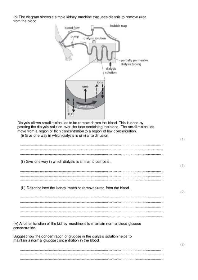 Diffusion and Osmosis Worksheet and Diffusion Osmosis and Active Transport Practice Questions