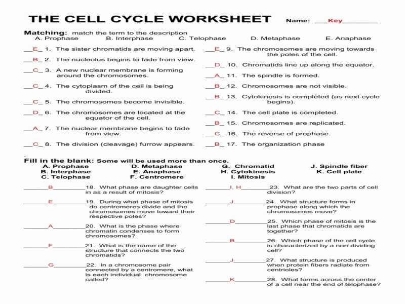 Dna Mutations Worksheet together with Worksheets Wallpapers 43 Best Insolvency Worksheet Hi Res