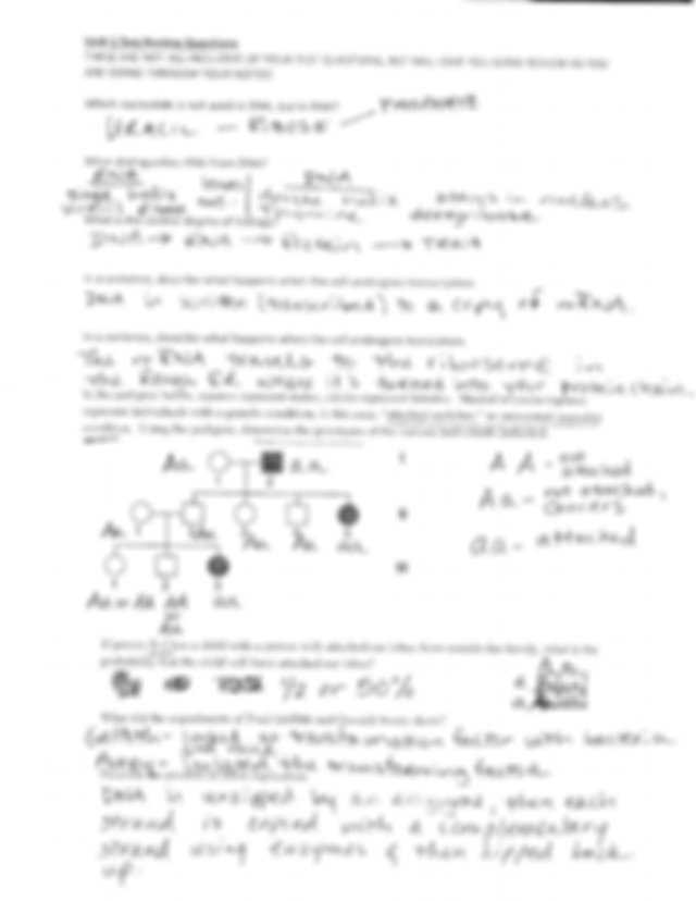Dna Unit Review Worksheet and Unit 5 Test Review Key Nam E Dna Review Worksheet 1 What Does Dna