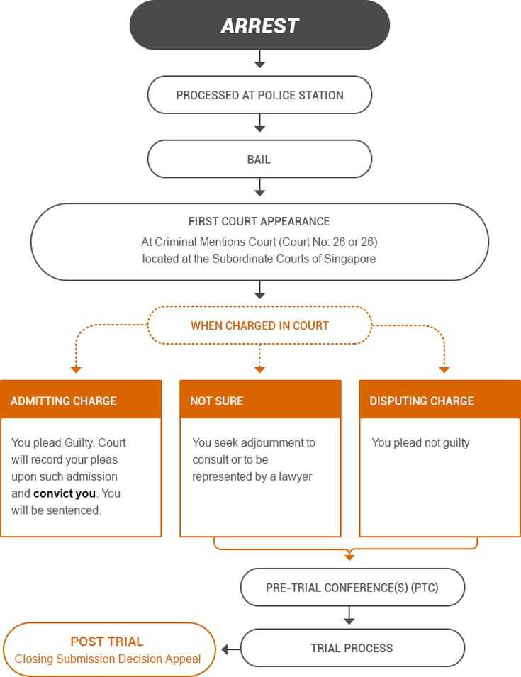 Due Process In Criminal Proceedings Worksheet Answers as Well as 28 Best Criminal Law Images On Pinterest