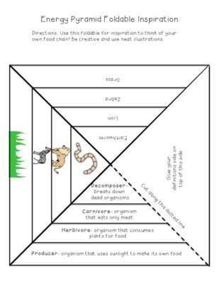 Ecological Relationships Worksheet with 25 Best Stem Symbiotic Relationships Images On Pinterest