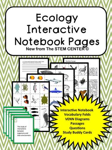 Energy Vocabulary Worksheet and Ecology Interactive Science Notebook