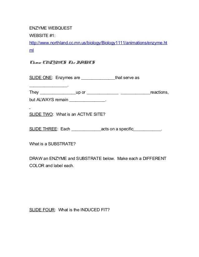 Enzymes Worksheet Answer Key together with 37 Lovely Biology Enzymes Worksheet Answers