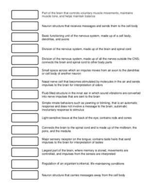 Evolution Vocabulary Worksheet or 676 Best Science 6th 12th Grade Images On Pinterest