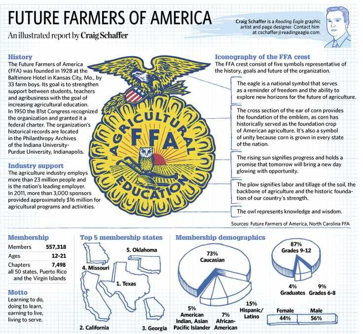 Ffa Officer Duties Worksheet together with 19 Best Ffa Unit Images On Pinterest