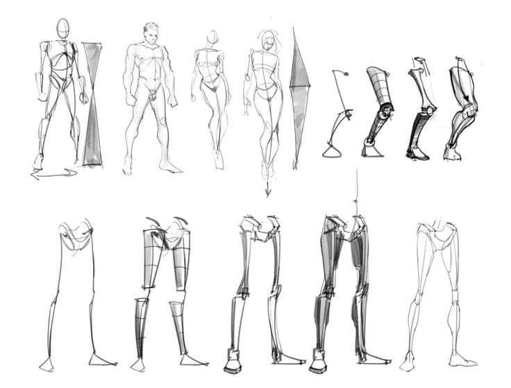 Figure Drawing Proportions Worksheet Along with 24 Best How to Draw Legs and Feet From Humans Images On Pinterest