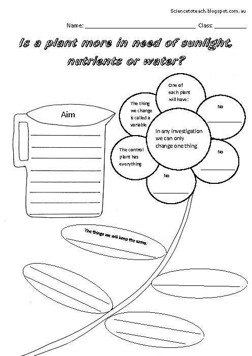 First Grade Science Worksheets or Science Second Grade Worksheets Worksheets for All