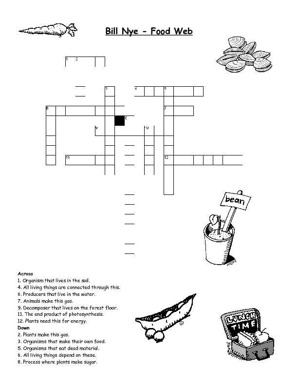 Food Chains and Food Webs Skills Worksheet Answers and Food Chains and Food Webs Skills Worksheet Answers Unique 20 Best
