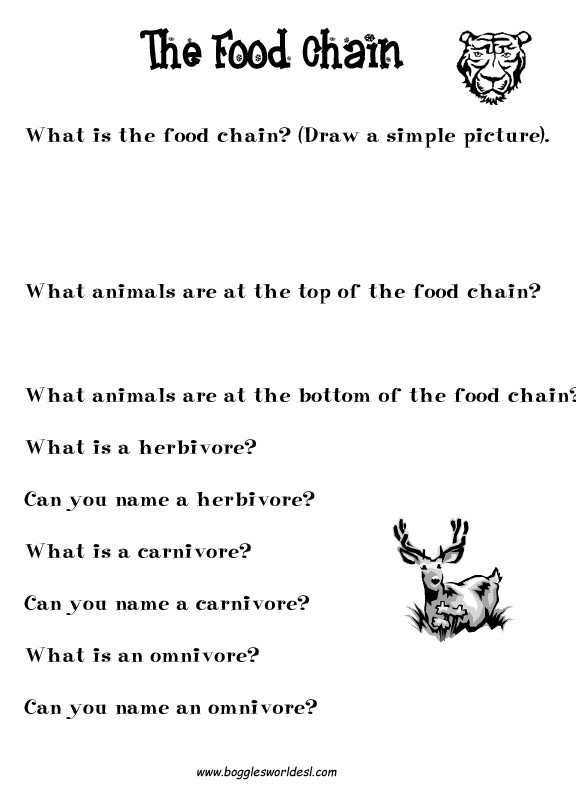 Food Web Worksheet Answer Key with 25 Best Food Web Worksheet Answers