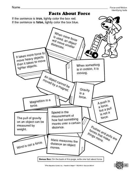 Forces and Friction Practice Worksheet Answer Key or Facts About force Worksheet Science social Stu S