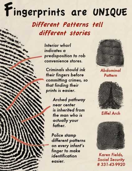Forensic Science Worksheets as Well as Fingerprints are Unique Science and More Pinterest