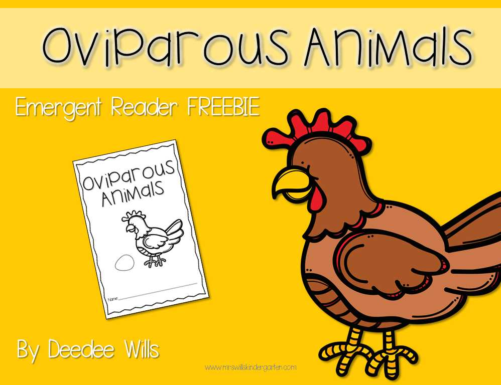 Free Animal Classification Worksheets together with Kindergarten Oviparous Worksheets