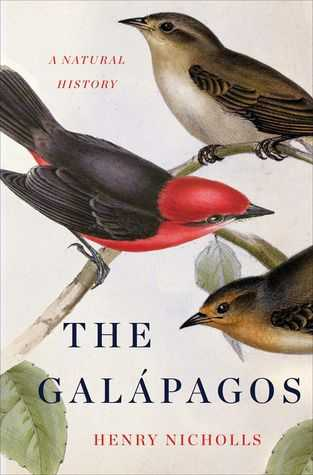 Galapagos island Finches Worksheet Along with 18 Best Charles Darwin Finches Images On Pinterest