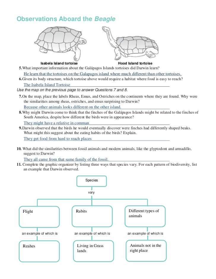 Galapagos island Finches Worksheet with Chapter 16 Worksheets
