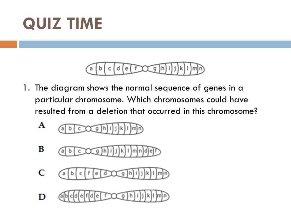 Gene and Chromosome Mutation Worksheet and Beautiful Linked Traits Worksheet Unique Chromosome Mutation