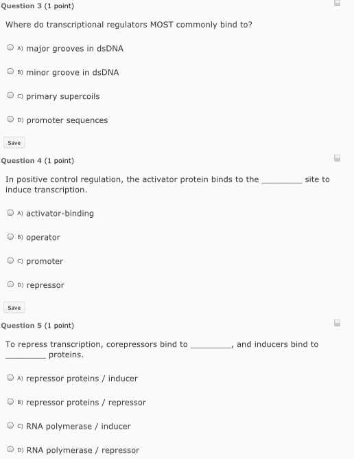 Gene Regulation and Expression Worksheet Answers and 36 New S Control Gene Expression In Prokaryotes Worksheet