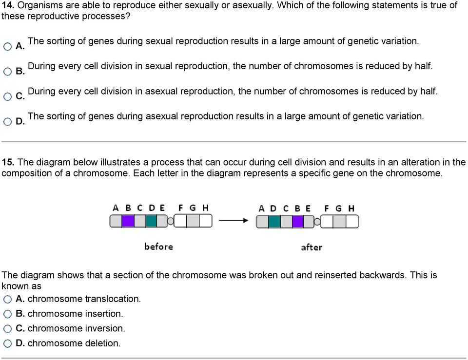 Genetic Mutations Worksheet Answers and Mutations and Genetic Variability 1 What is Occurring In the