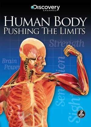 Human Body Pushing the Limits Strength Worksheet as Well as 42 Best Cells within Images On Pinterest
