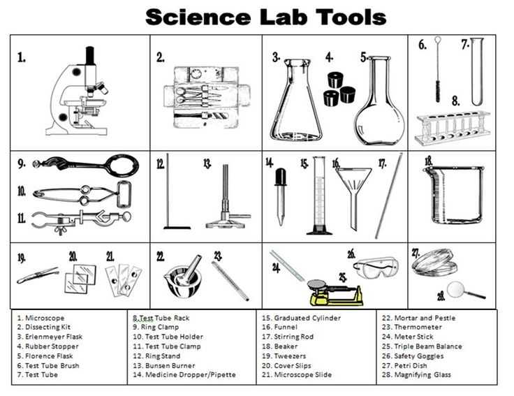Laboratory Equipment Worksheet with 132 Best Safety In the Science Lab Images On Pinterest