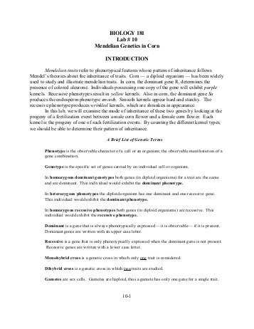 Mendelian Genetics Worksheet Answer Key with 8 Useful Resources for Writing Scholarship and College Admission