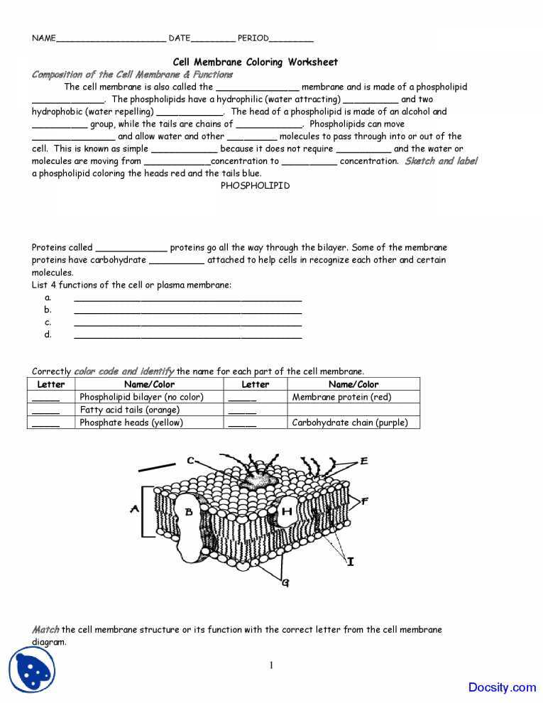 Osmosis and tonicity Worksheet or Worksheet Templates Cell Membrane and Transport Worksheet Answers