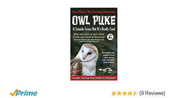 Owl Pellet Dissection Worksheet as Well as Amazon Owl Puke toys & Games