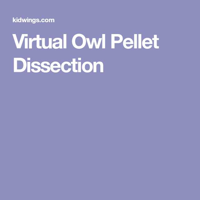 Owl Pellet Dissection Worksheet with Virtual Owl Pellet Dissection