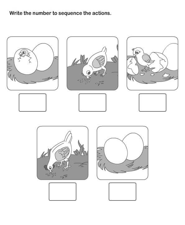 Picture Sequencing Worksheets as Well as 129 Best Sequencing Images On Pinterest