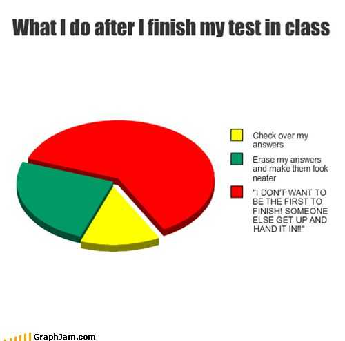 Pie Graph Worksheets High School Along with 53 Best Pie Charts Images On Pinterest