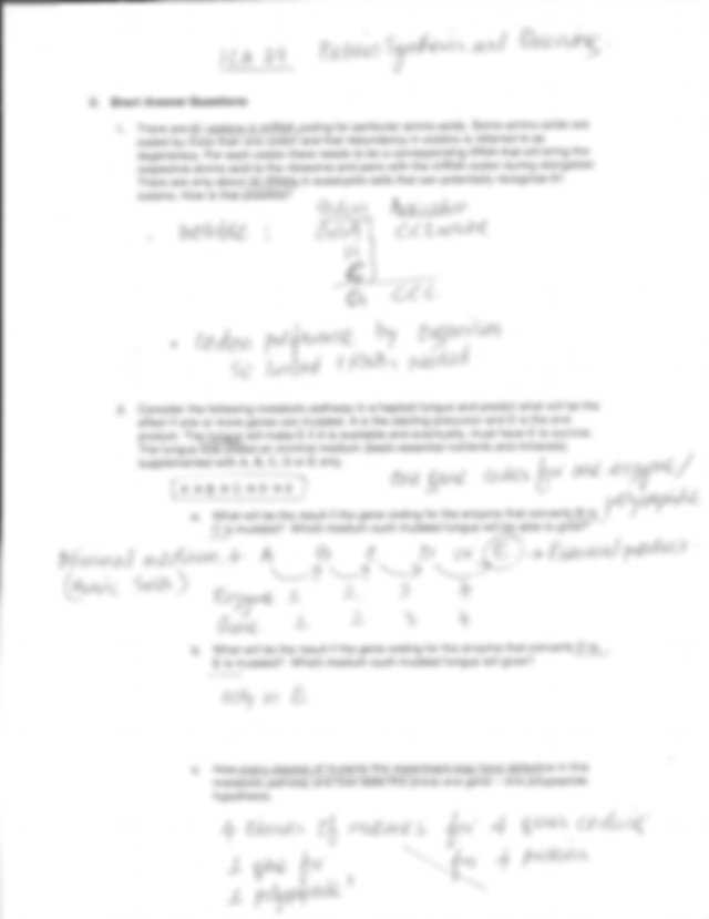 Protein Synthesis Review Worksheet Answers as Well as New Protein Synthesis Worksheet Answers Awesome Worksheet Dna Rna